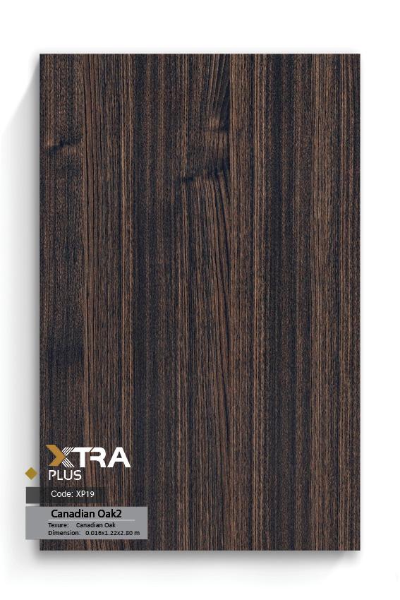 XTRA XP 19