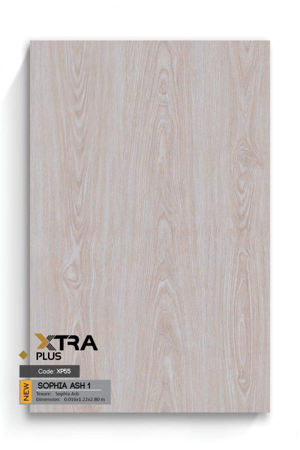 XTRA EN big size87