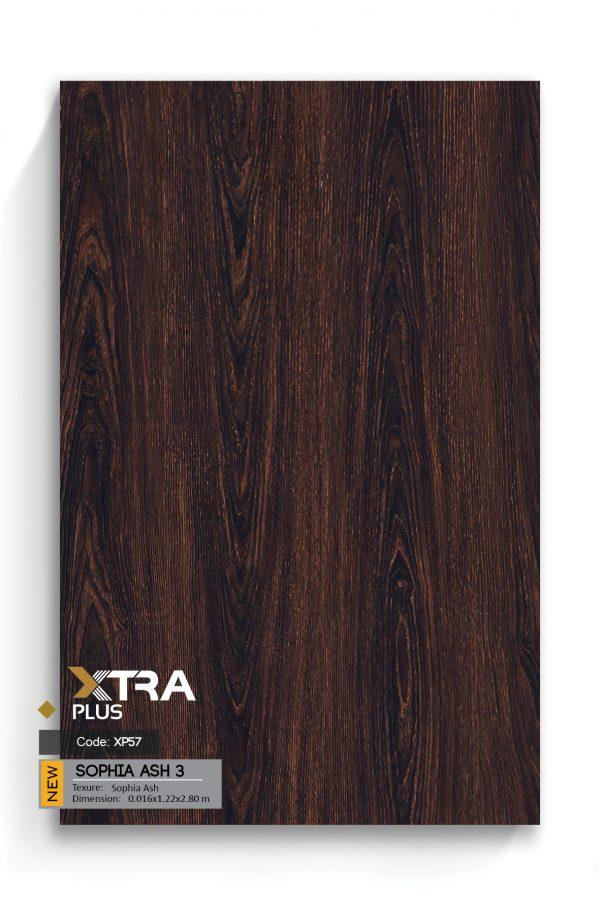 XTRA EN big size89
